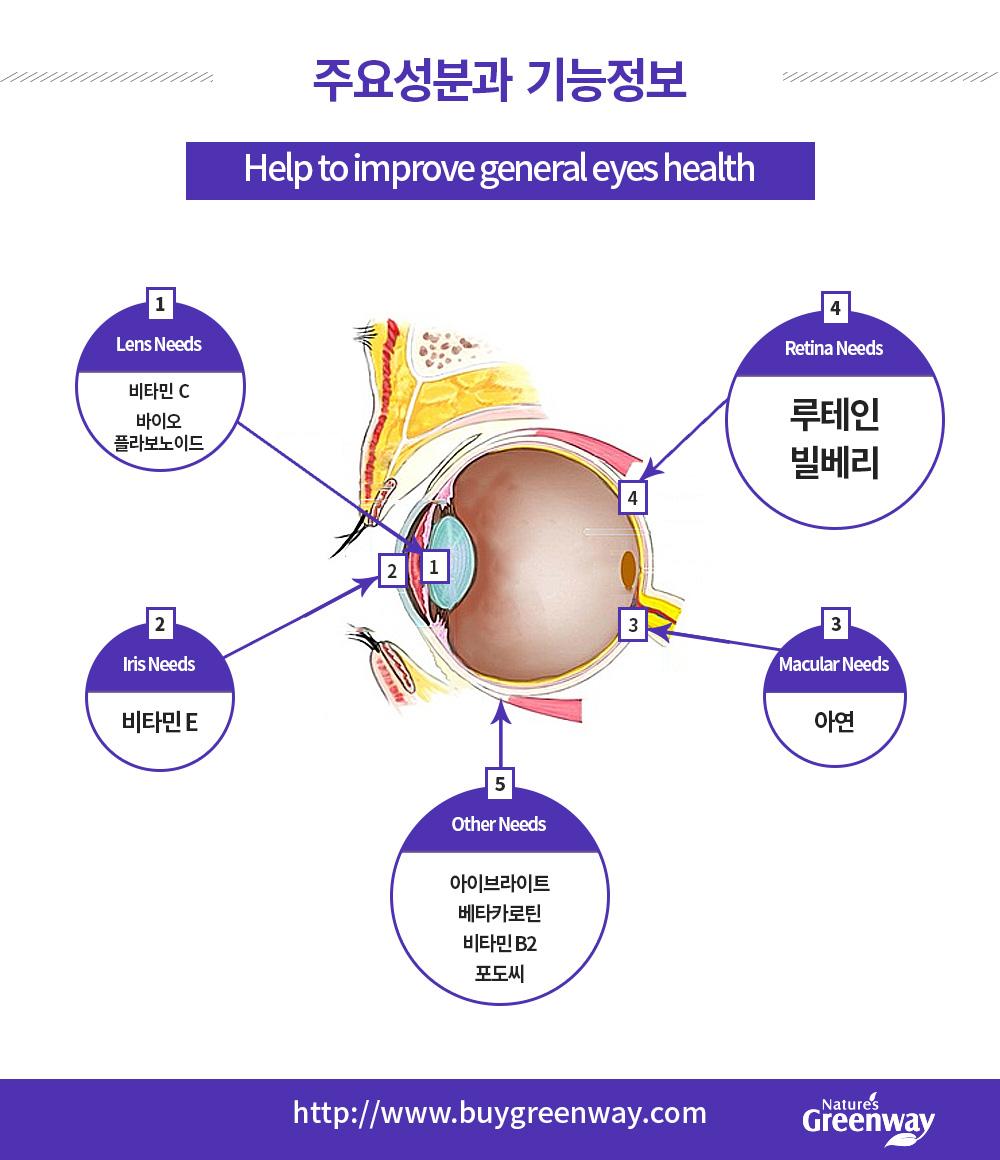 주요성분과  기능정보  Lens Needs -비타민  C 바이오 플라보노이드 Iris Needs - 비타민 E Macular Needs - 아연 Retina Needs - 루테인 빌베리 Other Needs - 아이브라이트 베타카로틴 비타민 B2 포도씨