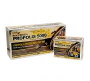 Propolis Capsules 500mg 30cap