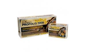 프로폴리스 5000mg 120캡슐